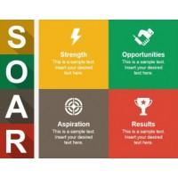 Analiza SOAR pentru mediul de afaceri din Romania